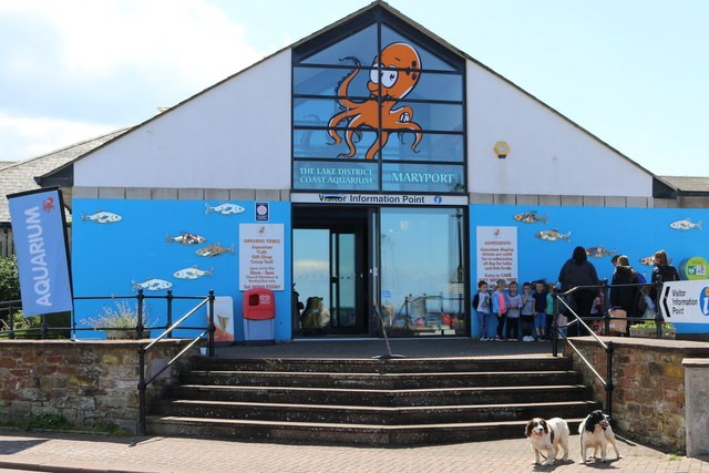 Lake District Coast Aquarium